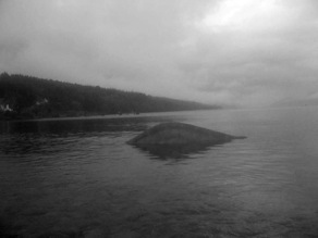 The hump out in the water of Loch Ness.