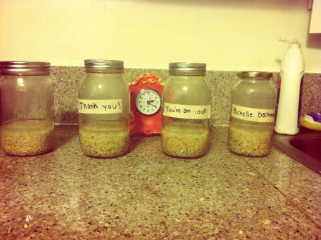 jars of rice on day one