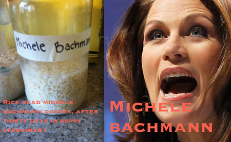 michele jar on day 30 compared to Emoto experiment