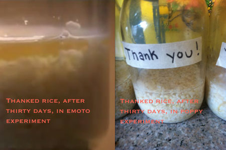thanked jar on day 30 compared to Emoto experiment