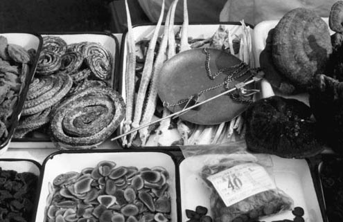 "Various Traditional Chinese Medicine ingredients: snakes, sea horses, bracket fungi (called ""mystical plant"" in China) and deer antler."