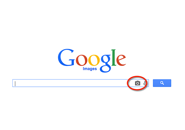 Google Image Search screenshot with reverse image search button circled